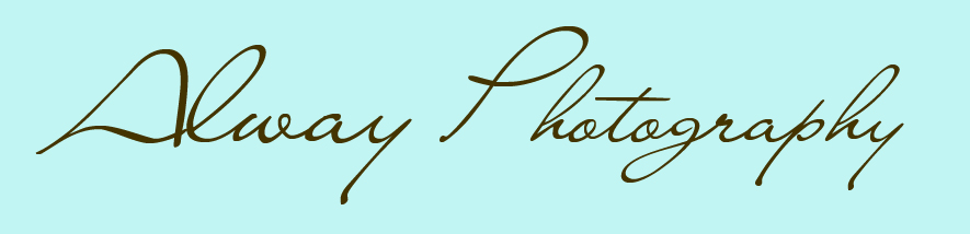 Alway Photography – Ludington Photographer logo